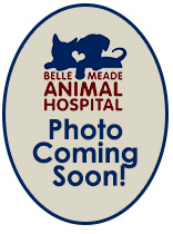 Dr. Jansen Milam Belle Meade Animal Hospital
