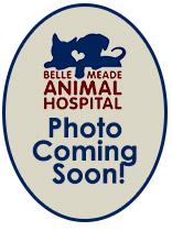 Belle Meade Animal Hospital Staff