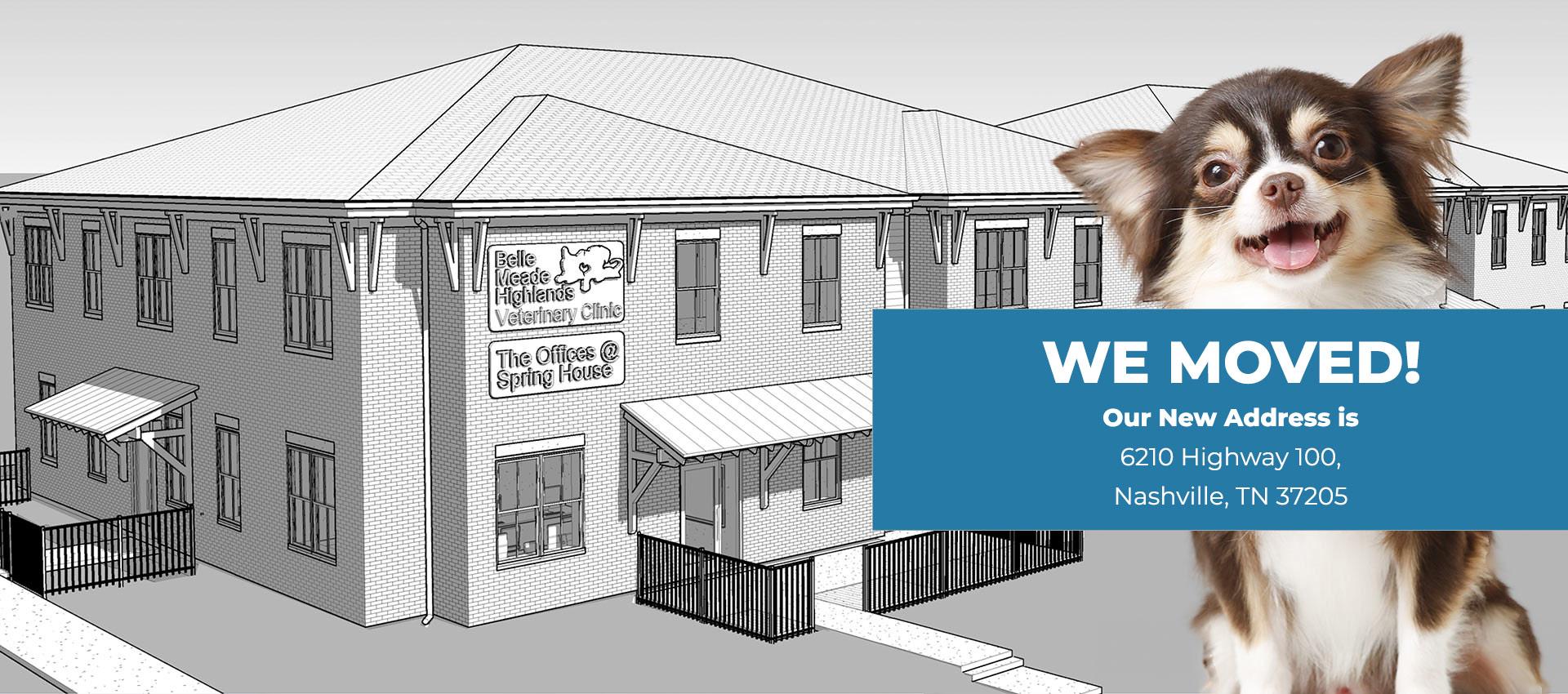 Animal Hospital in Nashville TN